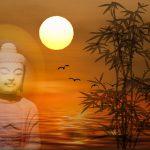 buddha-mare-alba